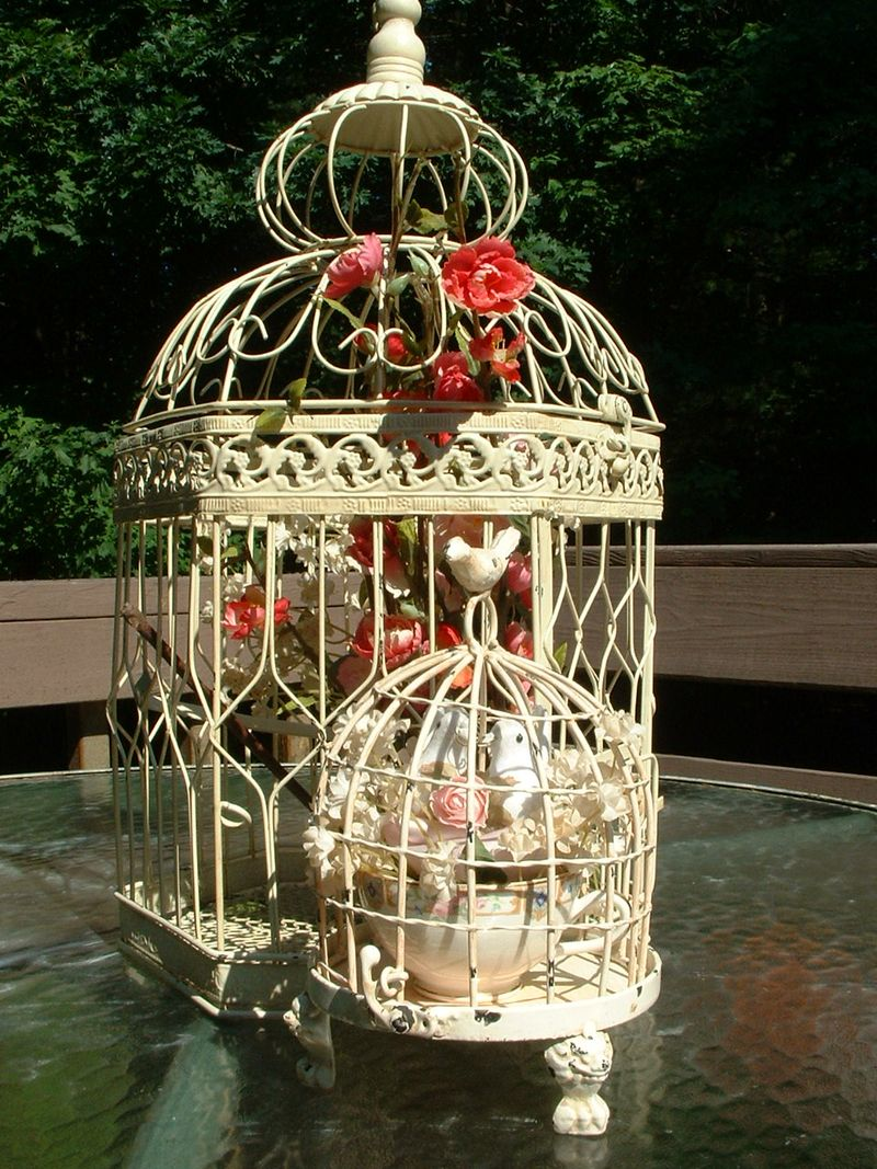 Love birds 049